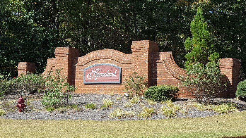 oconee-county-meridian-subdivision-homes-for-sale-14
